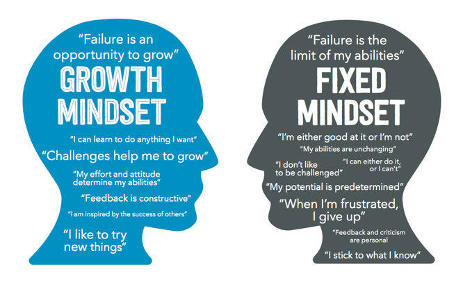 fix-vs-growth_mindset_visual